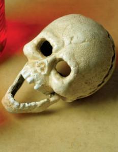 24646-Iron-Skull-Bottle-Opener