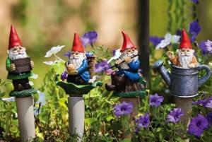 843750 Gnome Plant Nanny- Ensemble