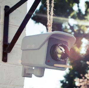 BMBH-SE Novelty Birdhouse- Security Camera- Use