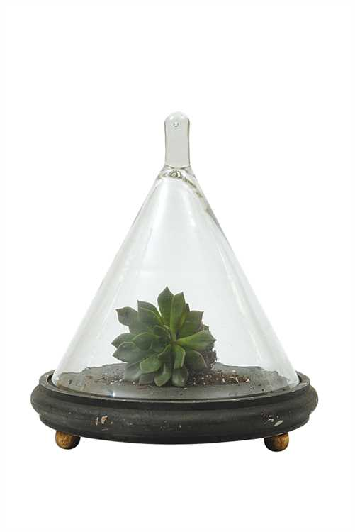 DA3256_thePHAGshop_Glass Cloche with Rustic Base- Charcoal