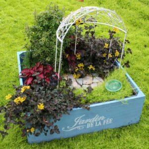 Fairy Gardening- Jardin Box Blue