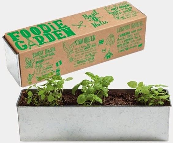 Foodie-Garden-Basil