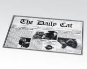 Newsprint Placemat-The daily cat