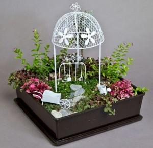fairy gard_ Gardeners delight