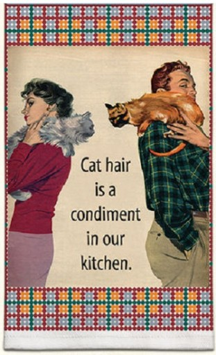 retro cat hair