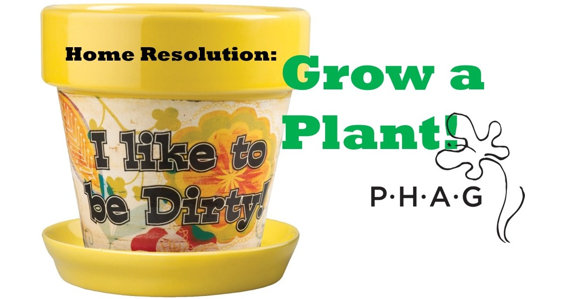 thePHAGshop_home_resolution_breathe_easy_grow_a_plant